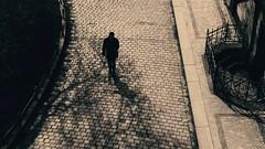 stripes (kestercrosberger) Tags: blackandwhite black white grey monochrome street people sunshine evening contrast city architectrue road sony dsc rx100m2