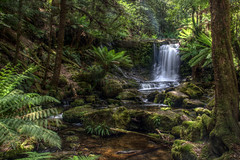 Horseshoe Falls - Mt. Field National Park (pbr42) Tags: australia tasmania mountfieldnationalpark nationalpark trees forest landscape nature outdoor hdr water h2o stream waterfall