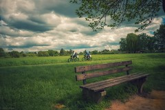 Cloudy day... (hobbit68) Tags: bank hobbyfotograf holzplanken holzbank holz gras rasen sky wolken himmel clouds baum tree personen radfahrer fahrrad
