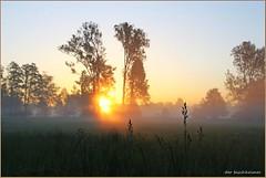 Morgens ... (der bischheimer) Tags: spreewald spree sonnenaufgang sonne nebel dunst mist fog lübbenau brandenburg lausitz canon derbischheimer