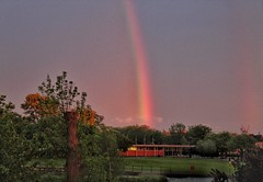 A lovely rainbow, to end a memorable day! ❤😊❤ (LeanneHall3 :-)) Tags: rainbow sky skyscape green grass leaves trees branches eastpark hull kingstonuponhull windmill aviary lake landscape canon 1300d