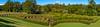 Living Labyrinth (Claude Downunder) Tags: portmacquarie nsw australia bago bagovineyard maze hedge labyrinth trees sky grass green blue tree landscape