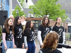 Festival holanda 18 (298)