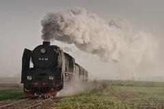 untitled by ahimsia - Special train on the Wolsztyn - Nowa Sól line organized by Towarzystwo Przyjaciół Wolsztyńskiej Parowozowni.