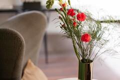 IMG_7823MAGAPIX (MAGAPIX!) Tags: interiorismo fotografíaarquitectura diseñointerior arquitectura fotografía inmuebles hoteles hotels home booking mexico minimalista minimalism