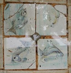 Tile detail at the bottom of a pond | Hemmingway House (Kaemattson) Tags: theernesthemingwayhomeandmuseum hemingway house key west florida keys tropical garden fish tiles detail fountain pond