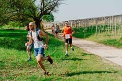trail_delle_rocche_roero_2018_0377 (Ecomuseo delle Rocche del Roero) Tags: aprile ecomuseodellerocche edizione montà rocche trail uisp trailrunning roero