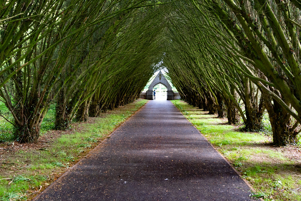THE ENTRANCE TO ST. PATRICK'S COLLEGE CEMETERY IN MAYNOOTH [SONY A7RIII IN CROP SENSOR MODE]-139531