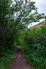 North Ogden Rain Storms-6 (sammycj2a) Tags: northogdenutah lightning storms nikon ogden utah north
