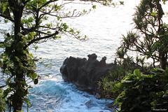 Manapany-les-Bains : le Grand Cap (philippeguillot21) Tags: cap rocher rock manapanylesbains saintjoseph reunion france outremer indianocean africa pixelistes canon