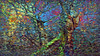 20180402_163720_p (wos---art) Tags: bildschichten wald sträucher bäume äste fusweg wildwuchs natur natürlich gewachsen