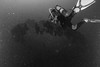 Le Donator - Port-Cros - 22/04/2018 (YackNonch) Tags: wreck nauticamna7d canoneos7d aubagneplongéepassion ef815mmf4lfisheye parcnationaldeportcros scubadiving canon blackwhite app diving na7d portcros eos lieu 7d noirblanc donator plongeur nauticam diver ss scuba prosperschiaffino ssysd1 épave plongée ef noiretblanc bw méditerranée plongéesousmarine bormesplongée nb aubagne action dive blackandwhite macro france