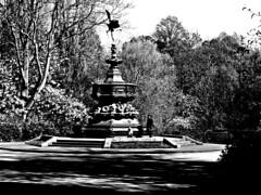 Anteros Monument, Sefton Park BW (ronramstew) Tags: spring liverpool merseyside uk seftonpark statue bw blackandwhite anteros monument