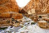 Canyon-Darga - Judaean Desert - Israel - Follow me on Instagram:  @lior_leibler22 (Lior. L) Tags: canyondargajudaeandesertisrael canyondarga judaeandesert israel canyon darga judaean desert travel travelinisrael river hiking nature