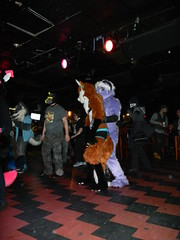 DSCN4543 (Yoru Tsukino) Tags: howl fursuit frusuiting furry nightclub party rave night furries dance toronto howltoronto