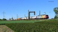 ES 64 F4 206 SBB Cargo ( Van Gogh ) (vsoe) Tags: eisenbahn bahn züge zug lok railway railroad engine train deutschland germany rheinstrecke nordrheinwestfalen nrw umleiterverkehr umleiter