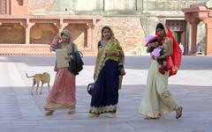 three fatehpur sikri beauties (kexi) Tags: india asia uttarpradesh 3 three women people child dog group fatehpursikri canon february 2017