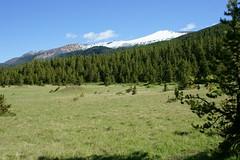 OpalHiills00010 (jahNorr) Tags: summertrip 2012 canadaalbertajaspernationalparkopalhills