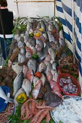 Essaouira Fish (nnorpa) Tags: morocco marrakech desert sahara camel essaouira zagora sand fish blu cammelli marocco cammello turbant street sunrise sunset sunlight light lights orange colours juice old men bikes lamb souk kids