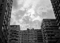 """north point sky"" (hugo poon - one day in my life) Tags: rollei35s kodak film tmax400 hongkong northpoint tsattszmuiroad plane bird sky cloud 70s architecture city urban lookingup sun"