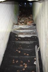 DSC_6829 (PorkkalaSotilastukikohta1944-1956) Tags: bunkkeri bunker abandoned hylätty adfsbunkkeri adfsbunker adfs exploring bunkerexploring porkkala porkkalanparenteesi porkkalanparenteesibunkkeri degerby inkoo degerbybunkkeri