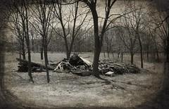 Lost farm on Forgotten Road (David Sebben) Tags: abandoned farmhouse black white lonely flooding illinois river monochrome collapse forgotten
