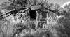Farrington Ranch Old House B&W (joeqc) Tags: nevada nv nye ranch farrington toiyabe cloverdale creek fuji xe3 xf1024f4r black bw blancoynegro blackandwhite white greytones monochrome mono oncewashome