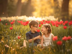 you are my Soulangel (agirygula) Tags: soulangel brother sister childhood magical lights sunset evening flowerfield blooms tulips tulpen red flower children childseemagic childrenseewonder boy girl spring