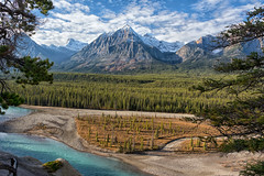 Kerskelin Goat Lick Viewpoint (Philip Kuntz) Tags: mtkerskelingoatlick kerskelingoatlickviewpoint athabascariver canadianrockies icefieldsparkway jaspernationalpark alberta canada mountaingoats