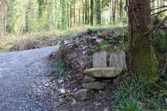 Improvisation (Julie (thanks for 9 million views)) Tags: bench stone improvisation track trees hbm woodland tinternwoods canoneos100d 2018onephotoeachday