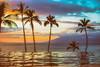 Another Chance (Thomas Hawk) Tags: america fourseasons fourseasonsmaui fourseasonsresort hawaii maui usa unitedstates unitedstatesofamerica wailea infinitypool pool serenitypool sunset swimmingpool kihei us fav10 fav25 fav50