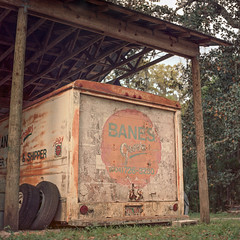 Old Cold Storage (macromary) Tags: citrusgrove orangegrove agriculture floridaagriculture smalltown smallfarm filmcamera vintage vintagecamera vintagelens oldglass manual mechanicalcamera analog availablelight analogphoto 120film bokeh depthoffield dof 120 mediumformat hassy hasselblad hasselblad500cm carlzeissplanar80mmf28ct planar 80mm portra portra160 color colour colourfilm floralcity banesgrove grove airbnb florida oldflorida fruit zeiss zeisslens orange oranges citrus citrusfruit hassey dusk coldstorage