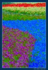 Impressionism at Euroflora - 2 (cienne45) Tags: euroflora euroflora2018 flaralies internationalflowershows parksofnervi nervi genova genoa genovanervi fiori flowers carlonatale cienne45 natale exhibition floralie impressionismo impressionism