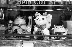 Lucky Cats. (setpower1) Tags: newyorkcity nyc bw leicam4 kodaktrix kodakd76 35mmfilm vintagefilmcamera bwyellowsc022filter epsonv550 leica50mmf2summicron chinatown luckycat