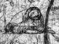 Leave As No Invite Nowhere (Steve Taylor (Photography)) Tags: lion hair mane leaveas noinvite nowhere scribble pen sophia bored middlefinger sphynx sammy face animal art abstract sketch artgallery monochrome blackandwhite monocolour monocolor contrast paper newzealand nz southisland canterbury christchurch city