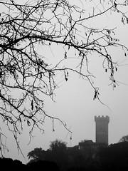 Vicopisano (Enio Parlanti) Tags: vicopisano pisa torre brunelleschi