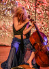 IMG_3564A (Mondo Circus Imaging) Tags: music musician cello cellist performance performer performing performanceart