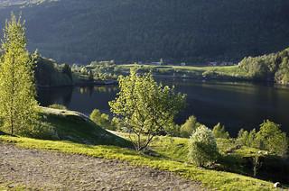 Vår i Sunnfjord