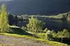 Vår i Sunnfjord (dese) Tags: may19 2018 2018 kveld evening sunnfjord europa dalsfjorden fjaler sognogfjordane fjord vår spring primavera may mai scandinavia europe vestlandet light lys