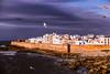Gulls over Essaouira (rrfaris1957) Tags: clouds essaouira gull port wall littlestories picswithsoul