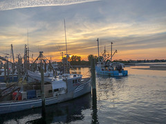 Watching the sun set from Jack Baker's Patio Bar in Point Pleasant Beach, NJ. Captured via an iPhone 8 Plus. (apardavila) Tags: jackbakerspatiobar jackbakerswharfside jerseyshore manasquanriver pointpleasantbeach fishingboat iphone iphone8plus river sky sun sunset