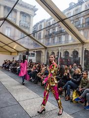 """... """"Gente en Sitios"""" ... (Lanpernas .) Tags: donostia indoor desfile moda modelos modelo chicas mujer fashion carpa walking colors 2018"""