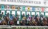 2018 Pimlico Race track (74) (maskirovka77) Tags: pimlico dirt mare race racehorse threeyearold turf yearling