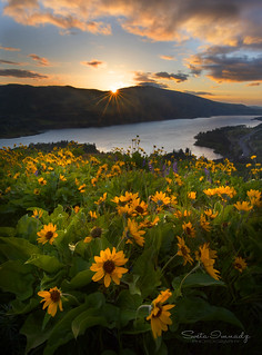 Sunrise over Columbia River Gorge.