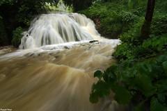 la cascade du Bief de Caille en Crue - Ronchaux (francky25) Tags: la cascade du bief de caille en crue ronchaux franchecomté doubs