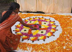 Indian Flower Display (Sharpshooter Alex) Tags: petals kerala onam art indian india woman female flower display festival cultural asia travel