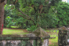 The Malay graveyard - Victoria Street, Singapore (cattan2011) Tags: 新加坡 traveltuesday travelphotography travelbloggers travel naturelovers natureperfection naturephotography nature landscapephotography landscape themalaygraveyard victoriastreet singapore
