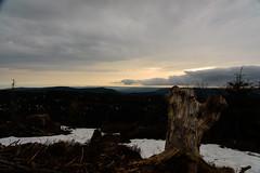 W75_0819 (werner_427) Tags: badenwürttemberg benjaworskij deutschland europa schwarzwald snow sunrise workshop