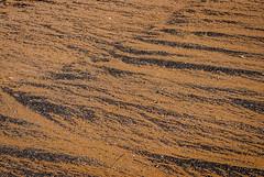 DSC_7093 (andrey.salikov) Tags: 180550mmf3556 jurmala magnifique nikond60 atmosphere atrevida balticlights beautiful buenisima city colour colourfulplaces dreamscene europe fantastic fantasticcolors fantasticplaces foto free goodatmosphere gorgeous harmonyday2018 harmonyvision impressive latvia latvija lettland lettonia light lovely mood moodshot nice niceday niceimage niceplace ottimo peacefulmind photo places relaxart riga scenery sensual sensualstreet spring streetlight stunning superbshots tourism travel trip wonderful юрмала весна отпуск туризм чудесно