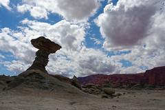 PaniPodroznik-ValledelaLuna-201803-56 (www.PaniPodroznik.pl) Tags: argentina southamerica valledelaluna panipodróżnik mstraveler gapyear amazing awesome beautiful